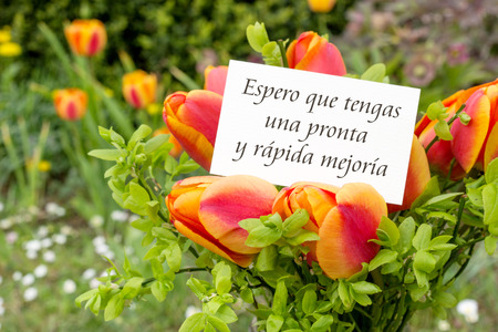 Greeting card with tulips and spanish text: I hope you make a swift and speedy recovery Stock Photo