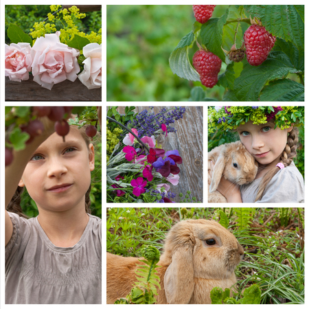 lady's mantle: Collage with young girl in garden
