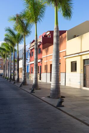Street with colorful houses and palm trees