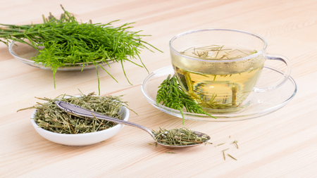 Herbal tea made from field horsetail Stock Photo