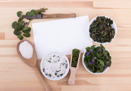 Herbal salt, fresh and dried ground ivy Standard-Bild