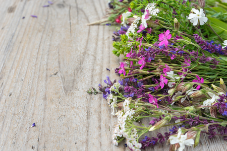 millefolium: Colorful meadow flowers on a wooden table Stock Photo