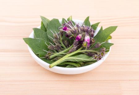Smeerwortelbladeren en bloemen