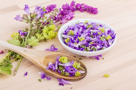 Flowers of lavender, thyme and ladys mantle