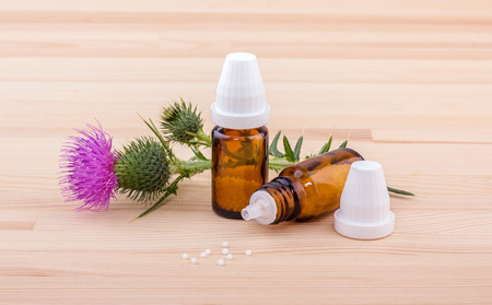 Mary thistle and homeopathic medicine Stock Photo