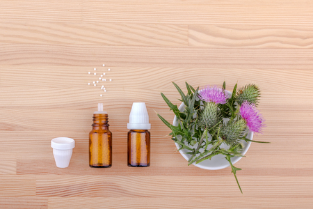 Mary thistle, homeopathic medicine and copyspace