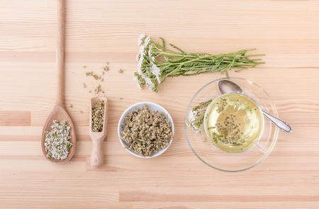 Draufsicht auf eine Tasse mit Schafgarentee, frische und getrocknete Schafgarbe