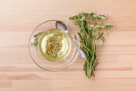 Top view of a cup with yarrow tea Standard-Bild