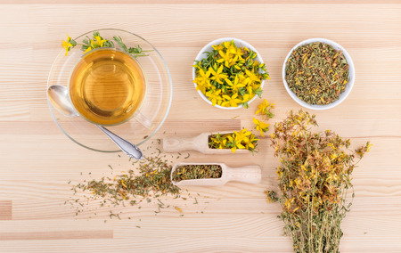 Cup of tea with dried and fresh St. Johns wort