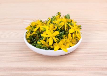 Bowl with flowering herb St. John Standard-Bild