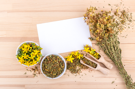 fresh and dried and fresh St. Johns wort