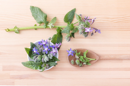 top view of Bowl with wooden bowl and borage on a wooden background