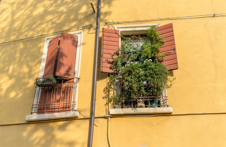 Two windows with open and closed shutters and green plants on the windowsill