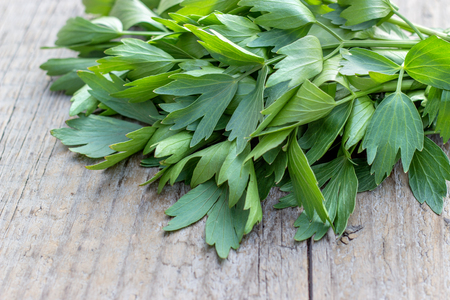 Fresh herb from lovage on a wooden board