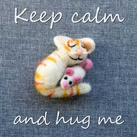 Greeting card with cat and mouse and text: Keep calm and hug me Standard-Bild