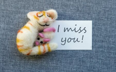 Greeting card with cat and mouse and English text: I miss you