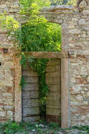 Plants grow through the front door of an abandoned house of Paper-Mill Valley