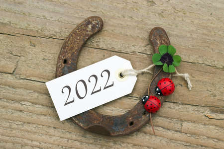 New Year`s Card with horseshoe, Leafed clover and ladybugs on wooden background