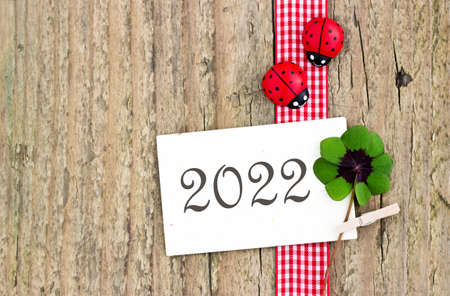 New Year card for 2022 with leafed clover and ladybugs Standard-Bild