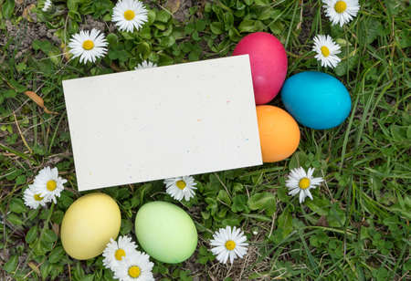 greeting card with easter eggs and copy space