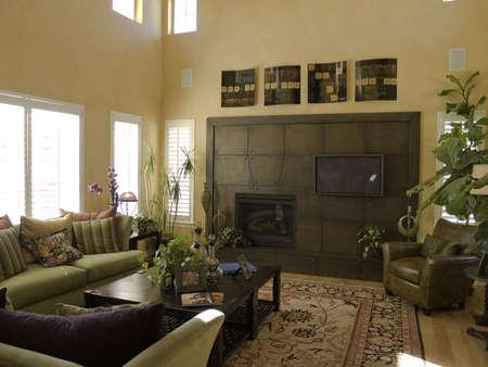 Elegant living room Stock Photo - 811125