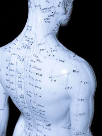 The Eastern or Asian acupuncture medical treatment said to prevent or treat a variety of medical ailments, including pain. Stock Photo - 1228803