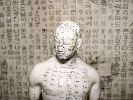 The Eastern or Asian acupuncture medical treatment is said to prevent or treat a variety of medical ailments, including pain.  Here is the upper chest and head of a doll used in training and demonstratoin Stock Photo - 3449598