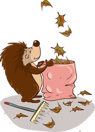to collect: vector illustration of a Hedgehog collect leaves