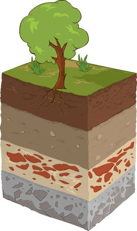 vector image of a the soil layer Stock Illustratie