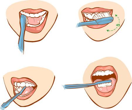 歯のブラッシングの白 backround ベクトル イラスト