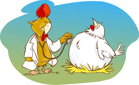 doctor and patient vector: Vector illustration of a doctor and patient cock chicken