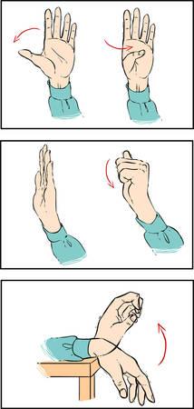 elasticity: bacround blanco Ilustración vectorial de un ejercicio de la mano Vectores