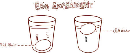 water sink: Egg floating in glass of water (sink or float egg freshness test)