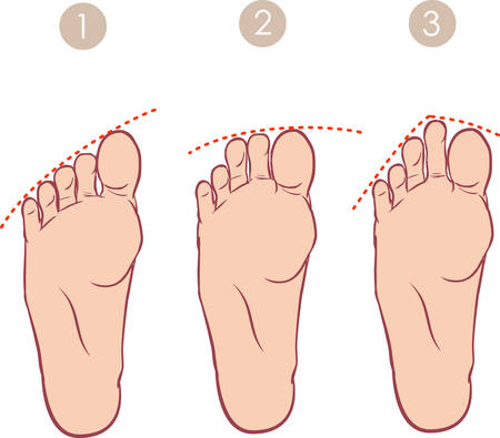 toenail: vector illustration of a form of toes