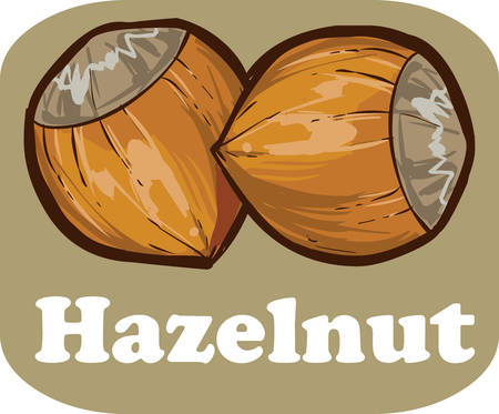 light brown background: Hazelnut kernel with on light brown background vector illustration Illustration