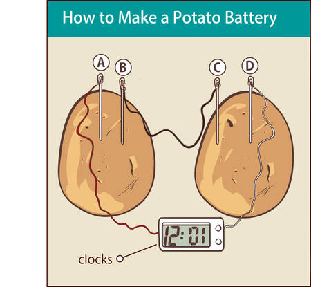 How to make a potato battery vector illustration with potato and timer