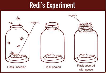 Francesco Redi 1668 experiment Foto de archivo - 127996562