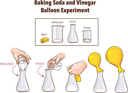 Baking Soda and Vinegar-Balloon Experiment-Science Ilustração