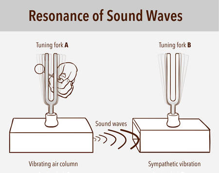Tuning Fork resonance experiment. When one tuning fork is struck, the other tuning fork of the same frequency will also vibrate in resonance Ilustração