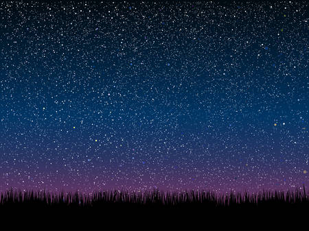 Silhouette of grass on a background of the starry dark blue sky. Illustration