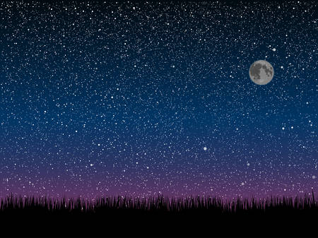 Silhouette of grass on a background of the starry dark blue sky. 矢量图像