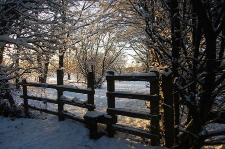 A Gate way To Winter