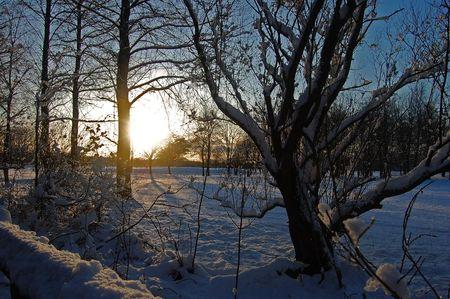 Winter Evening Stock Photo - 7196894