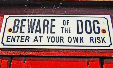 Beware Of The Dog Stock Photo - 7616438