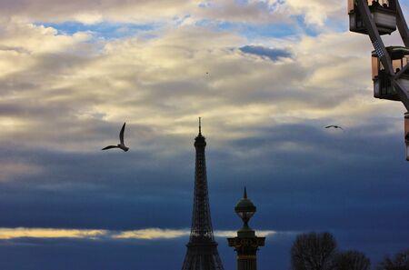 La Tour Eiffel avec la grande roue dans l'apprêt et une mouette volant Banque d'images - 19149097