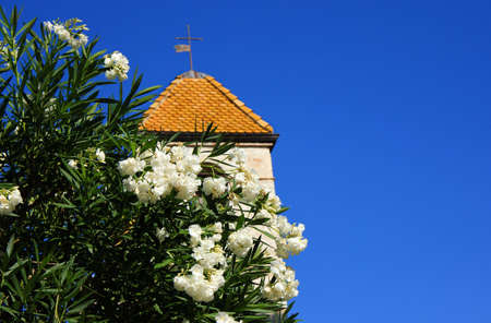 vence: a flowering tree in the background with an old village church Stock Photo