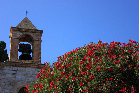 a flowering tree in the background with an old village church Banque d'images