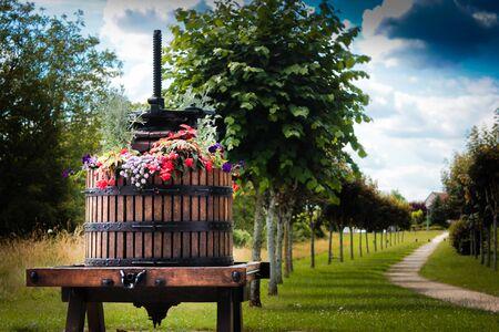Chemin de promenade avec presse à vin Banque d'images - 77422501