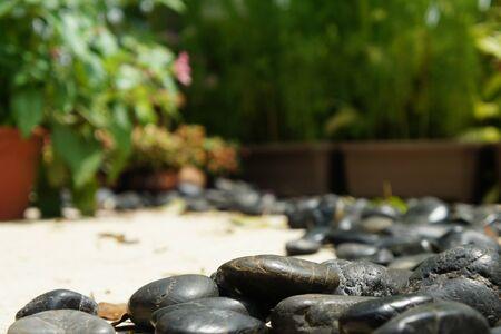 stone path: Paddle stone path