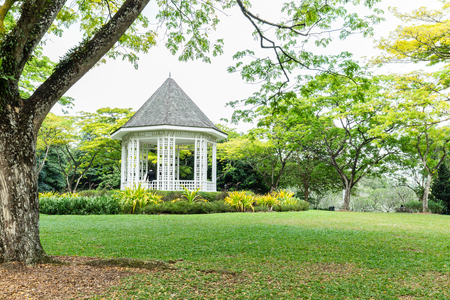 singapore city: Singapore Botanical Garden Landscape Editorial